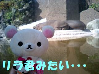 korichan-blog1131.jpg