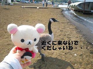 korichan-blog1185.jpg