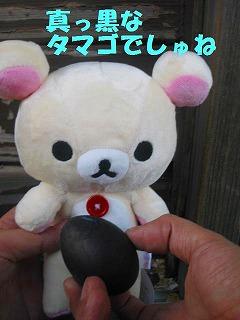 korichan-blog1735.jpg