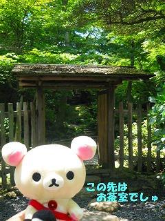 korichan-blog179.jpg