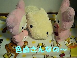 korichan-blog236.jpg