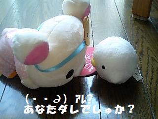 korichan-blog481-00.jpg