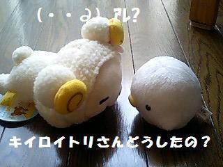 korichan-blog482-00.jpg