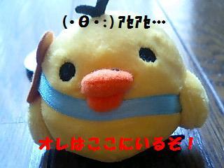 korichan-blog483-00.jpg