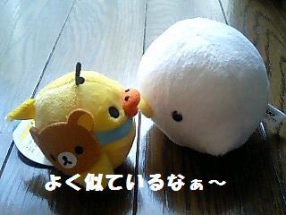 korichan-blog484-00.jpg
