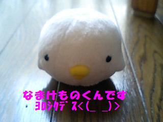 korichan-blog486-00.jpg