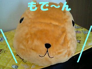 korichan-blog535.jpg