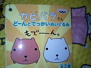 korichan-blog536.jpg