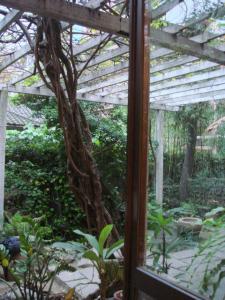 紫藤廬の庭
