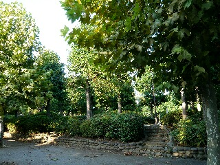 9.8公園1