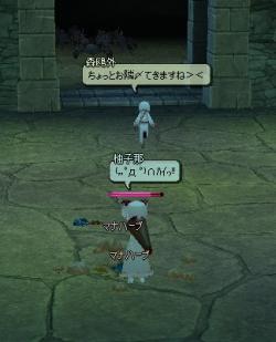 hh-yuzu.jpg