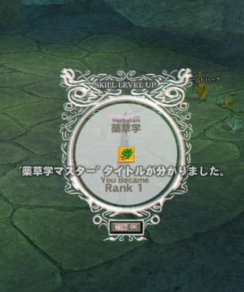 ys-yuzu1.jpg