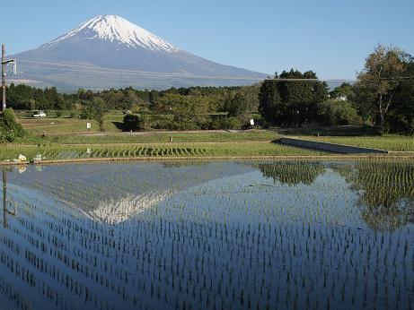富士山と電車が・・・来ない?!