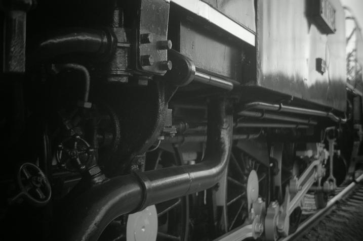 R-D1/Voigtlander Heliostigmat 3,5cm F2.5