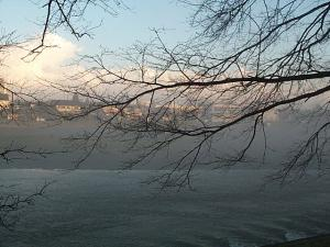 入間川の朝霧