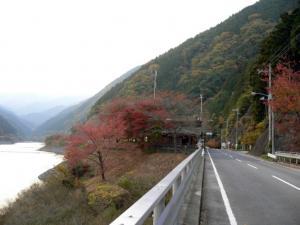 名栗の紅葉(2005年-1)