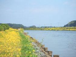 michinoeki01-3.jpg