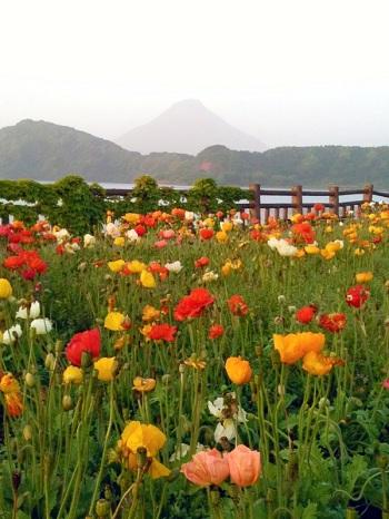 02池田湖より開聞岳を望む