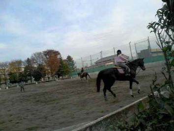 大学の乗馬クラブ