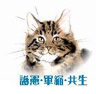 tiger21
