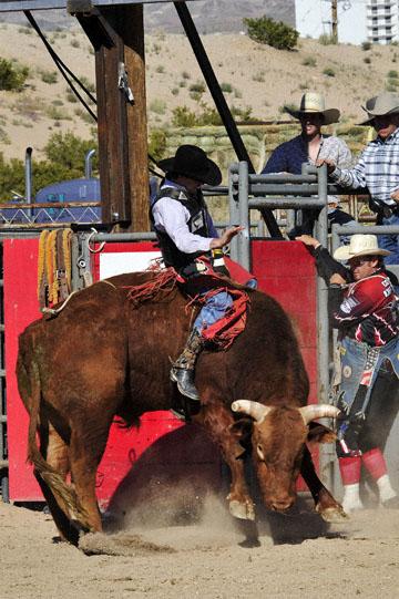 blog Bull Riding, Duncan Douglas' (74 Alvin, Texas), Laughlin, NV_DSC0001-3.31.11 (5).jpg