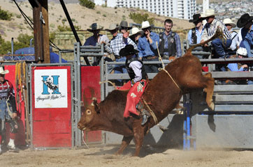 blog Bull Riding, Duncan Douglas (74 Alvin, Texas), Laughlin, NV_DSC0006-3.31.11 (5).jpg